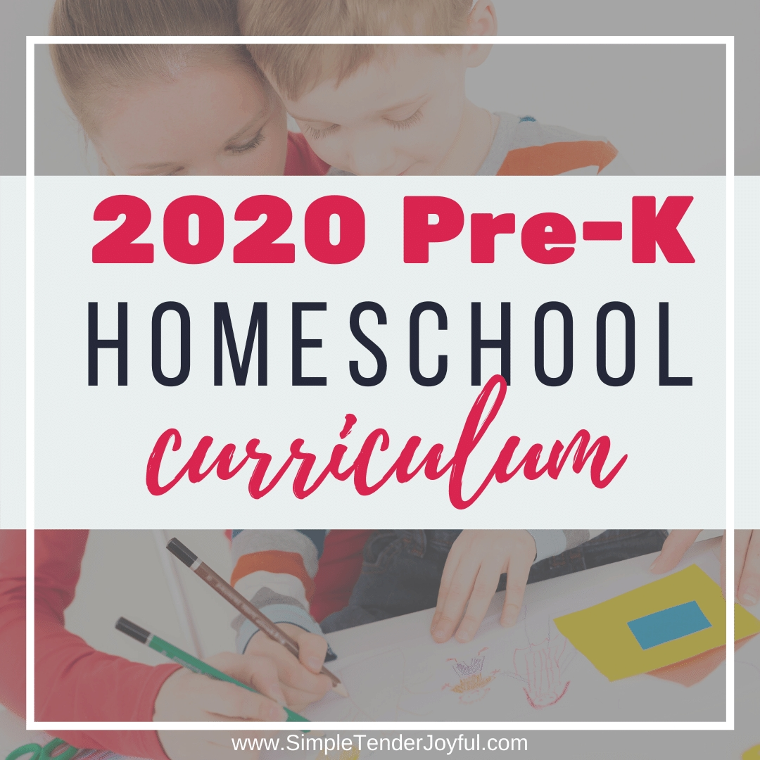 2020 pre k homeschool curriculum: what we actually use –