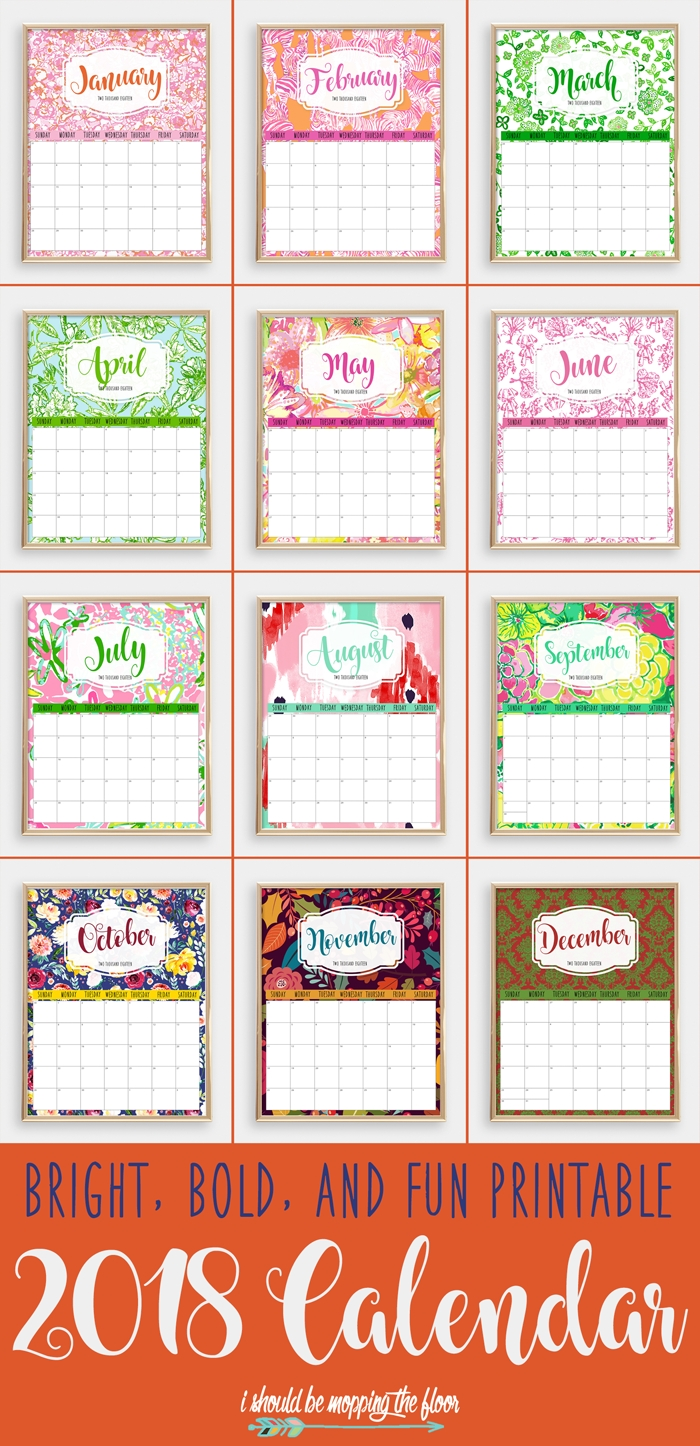 colorful 2018 printable calendar | i should be mopping the floor