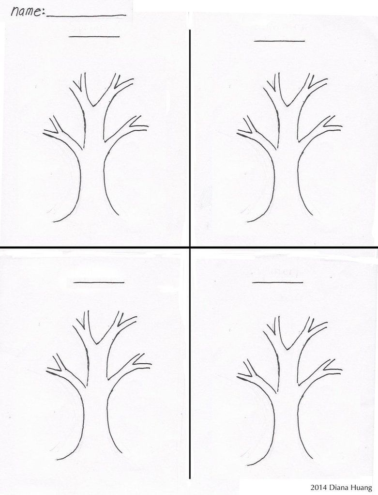 four seasons tree drawing template worksheetdiana huang