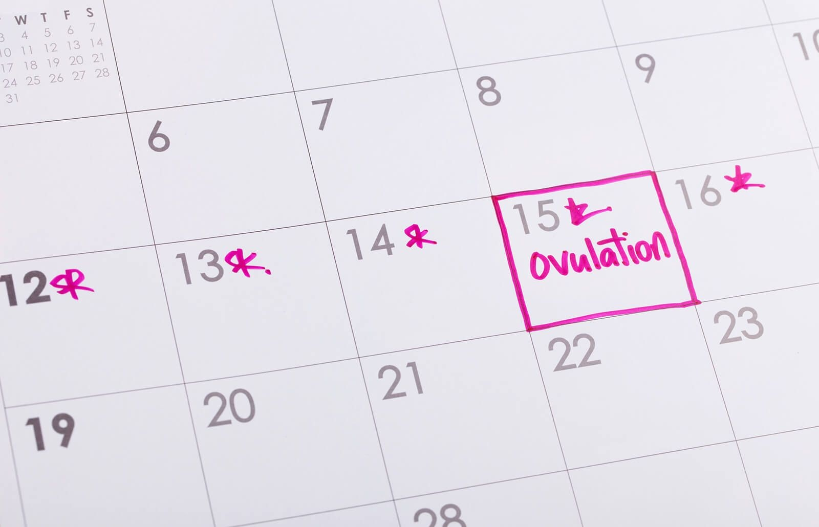 how to make and use an ovulation chart | lovetoknow