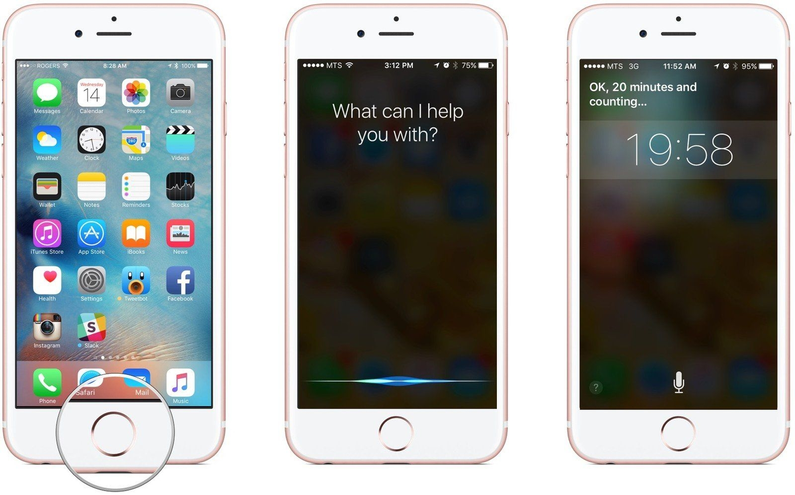 How To Set A Timer With Siri   Imore