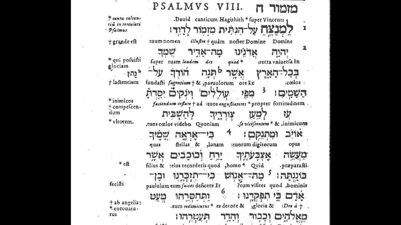 montanus psalm 8 learn latin and hebrew tehillim תהלים flv