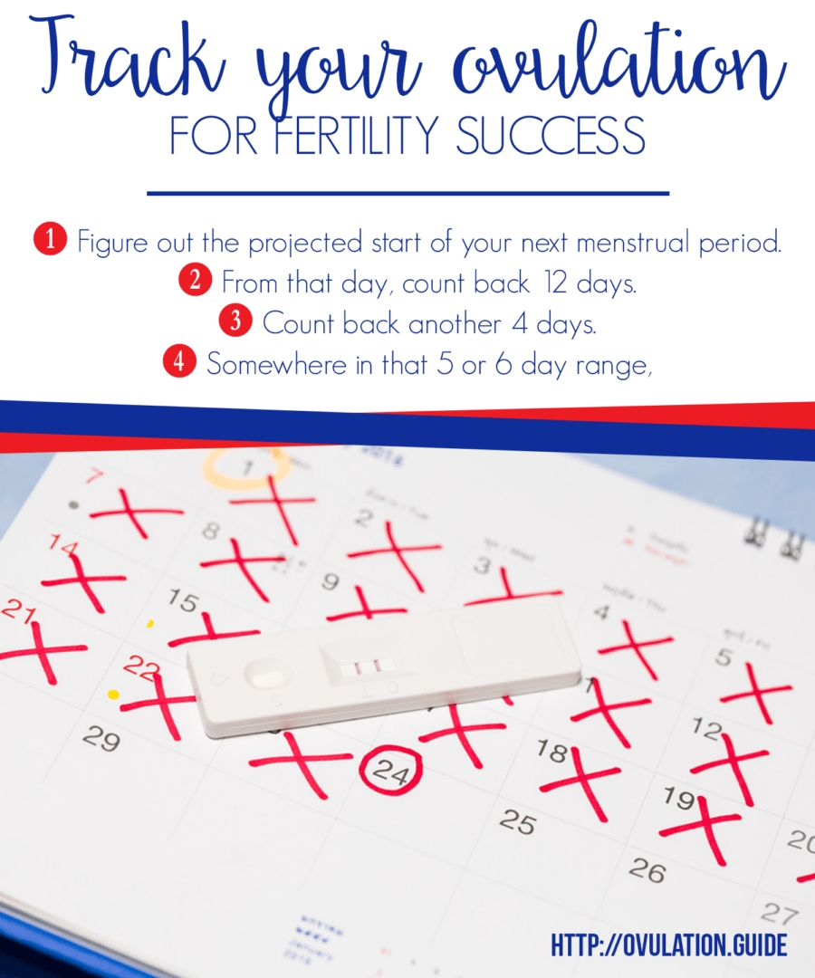 Ovulation Calendar And Knowing Your Fertile Days | Ovulation