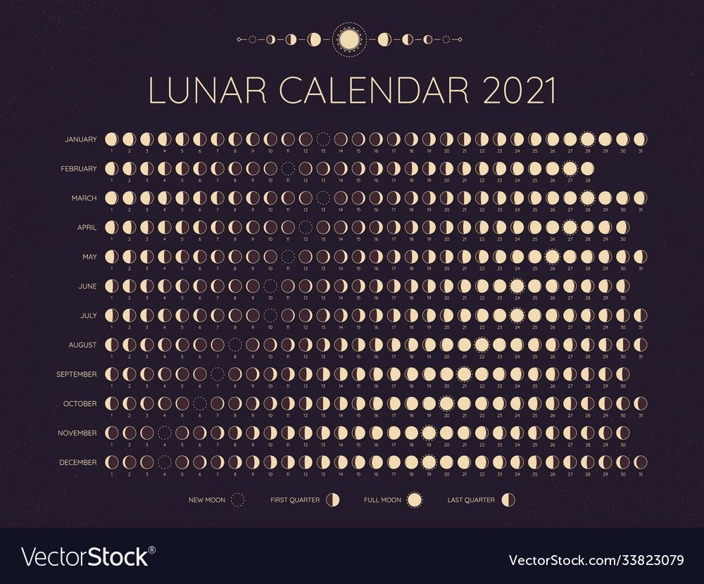 moon calendar 2021 lunar phases cycles dates vector image