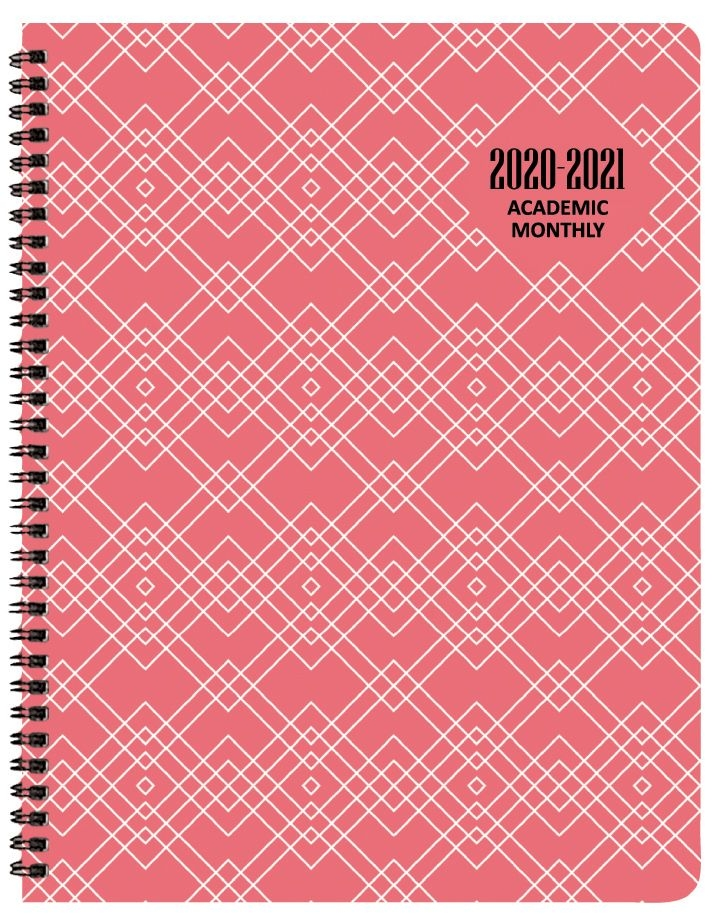 2020 2021 geotones academic monthly appointment planner 8