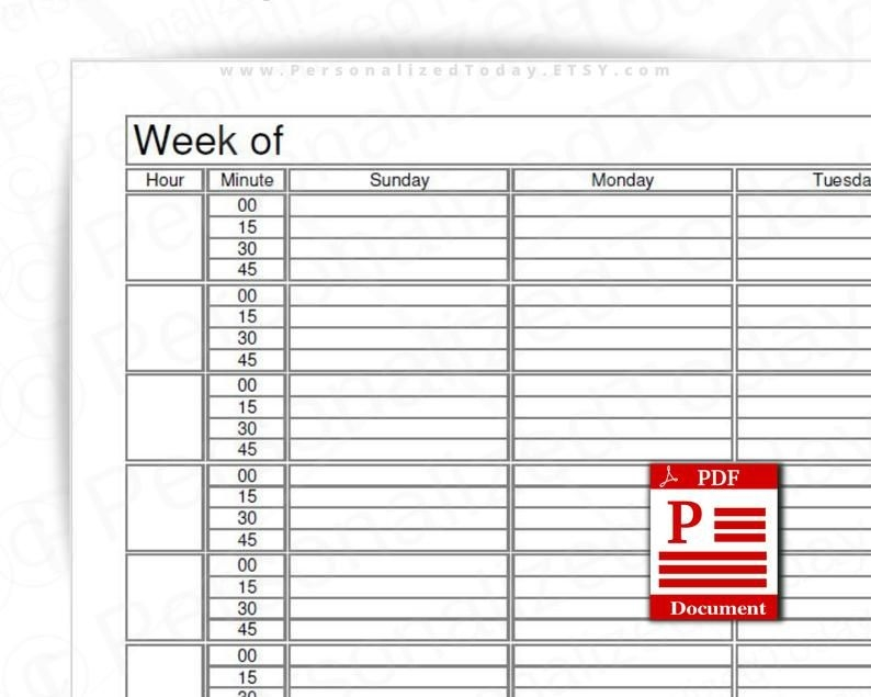 Weekly 15 Minute Time Increment Planner Fillable Editable